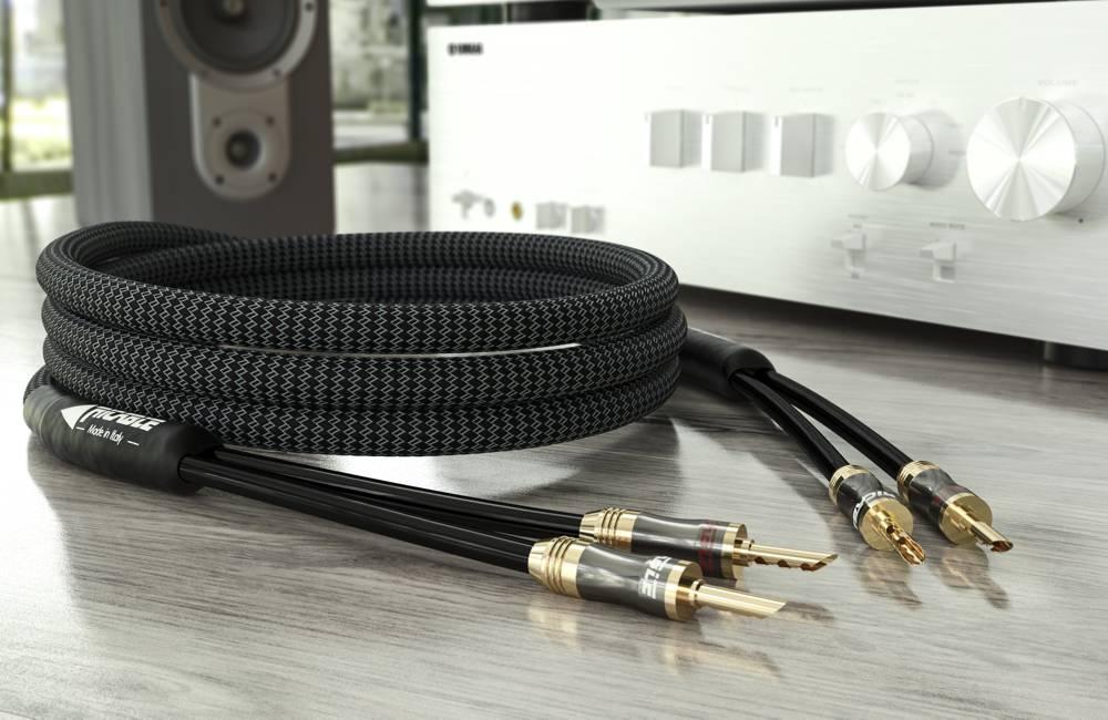 magnus speaker